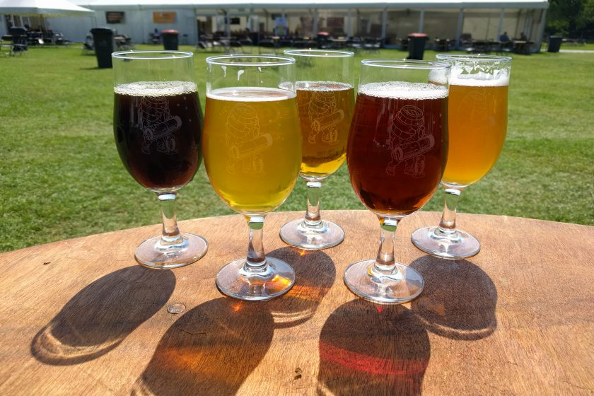 Different styles of beer in stemmed glasses in the garden at the Cambridge Beer Festival